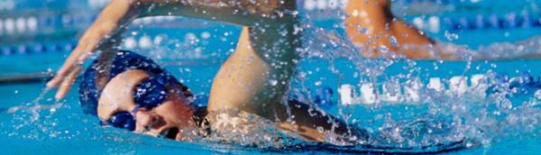 Becas natacion usa, eeuu y estados unidos