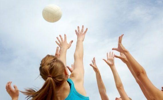 deporte universidad vt sports management